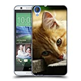 Just Phone Cases Schutz Hülle TPU Case Schutzhülle Silikon Tasche Dünn Transparent // V00004287 Katze liegend auf Holzbrettern // HTC Desire 626