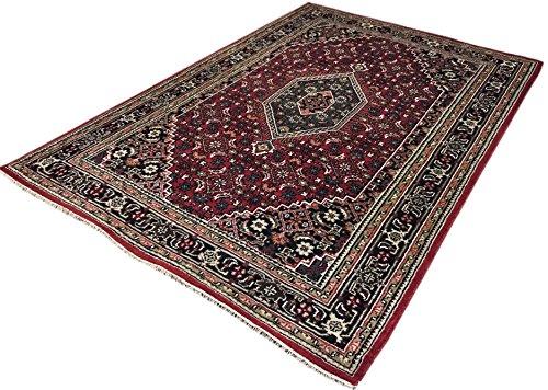 WAWA TEPPICHE Orientteppich Bidjar Handgeknüpft ROT Cream Teppich~ 100% Wolle (200 x 300 cm) - 200 Wolle Orientteppiche