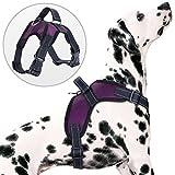 PETBABA Hundegeschirre, Reflektierend Weich Air Mesh Verstellbar Brustgeschirre mit Griff für Hunde - S in Lila