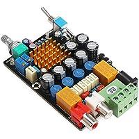 WINGONEER TA2021 Digit Amplificatore 12V dell'amplificatore 2021B Circuit Board 7000UF Double Channel 25W * 2 4 ohm / 13.5W * 2 8ohm DC 11-14.5V Binaural amplificatore audio stereo con interruttore on/off, fai da te cuffia Car Audio ampère con Dispositivi di