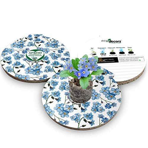 Eco-Decors multimediale | Biglietto d'auguri ecologico con semi di Nontiscordardime | Originale regalo ecologico con messaggio animato con Realtà Aumentata.