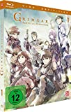 Grimgar, Ashes and Illusions - Vol. 1 [Blu-ray]