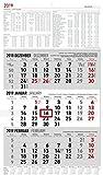 - Pro Kalenderblatt Vormonat, aktueller Monat und Folgemonat auf 1 Blick- Monatsübersichten von Dezember 2018 - Januar 2020- 4-sprachiges Kalendarium (DE/FR/IT/GB)- Deutsche Feiertage in den Ziffernblöcken rot gekennzeichnet- Feiertage (DE/AT/CH/FR/I...