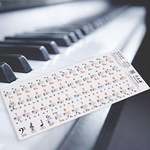 Beautyrain Piano Línea Etiqueta Spectrum 61 teclas