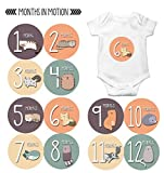 Monthly Baby Stickers by Months In Motion   12 Month Milestone Sticker for Newborn Babies Cats Kitten (Style 1174)