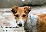 Straßenhunde (Wandkalender 2015 DIN A4 quer): Hunde, die in Indien auf der Straße leben (Monatskalender, 14 Seiten)