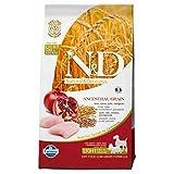 Dog Grain - Best Reviews Guide