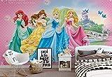 Wallsticker Warehouse Disney Prinzessinnen Cinderella Belle Fototapete - Tapete - Fotomural - Mural Wandbild - (198WM) - XL - 208cm x 146cm - VLIES (EasyInstall) - 2 Pieces