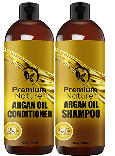 Organic Argan Oil Shampoo 16 oz and Argan Oil Conditioner 16 oz, Sulfate Free, Hair Repair Combo Set of 2 by Premium Nature