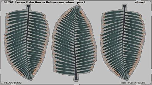 Eduard Photoetch 1:35 - Leaves Palm Howea Belmoreana Colour - EDP36207