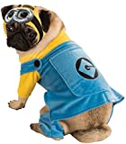 Best Pet Costumes - Pet Costume Minion Small Review