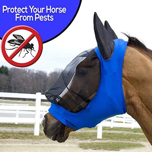 Stretch-design (MOOUK Pferd Anti-uv Anti Fly mit Ohren Weich Netz Gesichtsmaske Reiten Atmungsaktiv Kopf Schutz Stretch Design is Easy On Empfindliche Ohren Augen - Blau, 104x72x26mm)