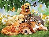 1000 pièces Jeux de puzzle Puzzle-Chiens et chats mutuels 70x50cm Jeux éducatifs pour enfants jouets éducatifs pour enfants puzzle de décoration pour la maison en bois...
