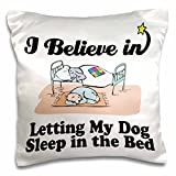 Designs I Believe In Designs - I Believe In Letting Dog Sleep In Bed - 16x16 inch Pillow Case