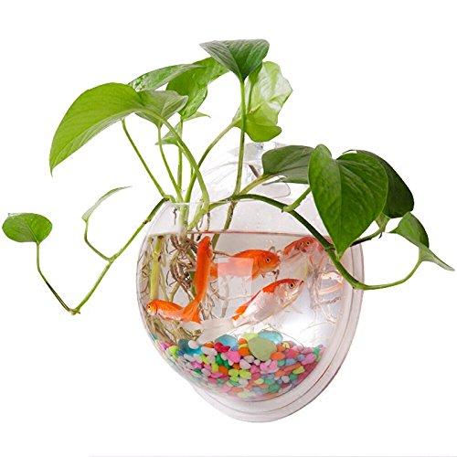 l zum Aufhängen Wandhalterung Fisch Tank Schale Vase Aquarium, Pot Schale Bubble Aquarium Decor, Polyresin, farblos, 7.7 inches ()