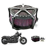BJ Global - Filtre à air en aluminium pour Harley Sportster XL 883 1200 2004-2015