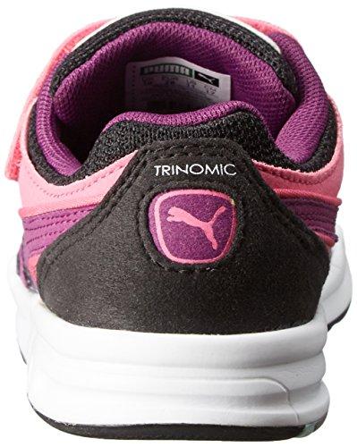 Vblack Trinomic Tennisschuh Synthetik Puma Kds De Uvas carmim Ro Sumo Xt1pus V Yx5TqwFn6w