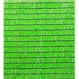 Catral 53010011 - Mini-rollo malla sombreo, 300 x 400 x 4 cm, color verde