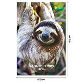 Eat, Sleep, Be Happy, Repeat Faultier Poster Janette (61cm x 91,5cm) + Original tesa Powerstrips® (1 Pack/20 Stk.) Test