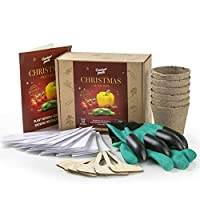 Winter Vegetable Seed Growing Kit - Grow Seeds of Christmas - 12 Seed Packets - Gloves with Claws, 6 Biodegradable Peat Pots, 6 Bamboo Plant Markers - Christmas Presents - Ideal Gardening Gifts