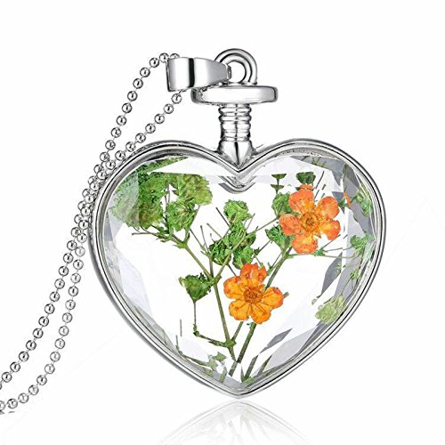 AMDXD Silber Halskette Damen Orange Grün Getrocknete Blumen im Herz Glas Echt Blumen Kette Anhänger 60CM