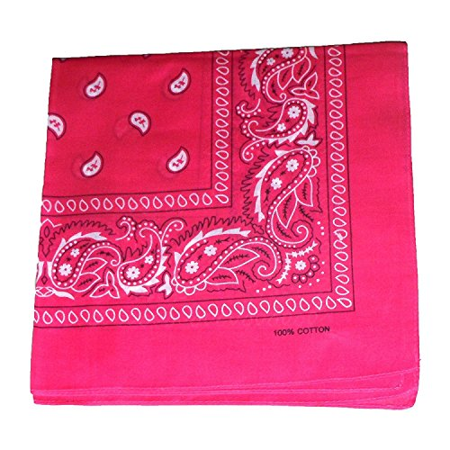 Switty-Paisley Bandanas By Romote 100% Cotton 12-Pack 22