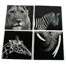 Set di 4sottobicchieri in vetro stile Wild Animal photo in acetato box Lion Giraffe Zebra elefante 142–678