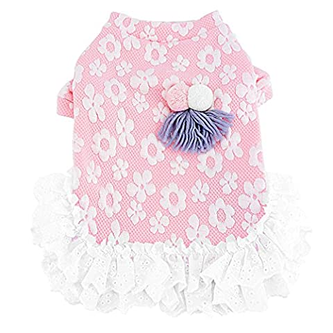 Ranphy Petit Chien/Chat robes Pull Robe Sweat Robe Yorkshire Vêtements mignon Dentelle Tutu Jupe