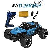 Quaan Ferngesteuertes Auto, 1:18 2WD RC Auto Off Road Buggy, 2.4 Ghz Radio Control Geländewagen Spielzeug Fahrzeug für Kinder Erwachsene
