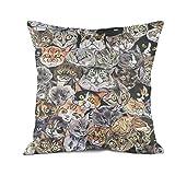 ERTYIOP Taie d'oreiller en Coton Motif Chat 45,7 x 45,7 cm One Size Cat's Eye...