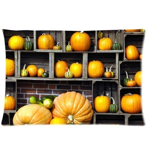 Denise Love bookcase drawer pumpkin harvest,body pillow case 20x30inch (Two sides)