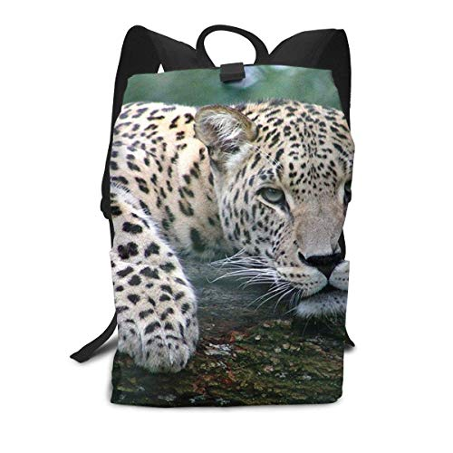 Ruhe Leopard Rucksack Mitte für Kinder Jugendliche Schule Reisetasche -