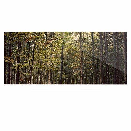 Kess eigene Sylvia COOMES Wald Bäume grün braun Luxe Rechteck Panel, 61x 91,4cm 61x 91,4cm