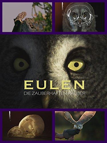 Eulen - Die zauberhaften Räuber -