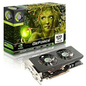 Point of View GTX570 Carte graphique Nvidia 1280 Mo G-DDR5 PCI-Express 16x 730 MHz
