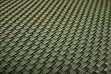 Sichtschutz aus Polyrattan, 100cm, Meterware, grün, Papillon™