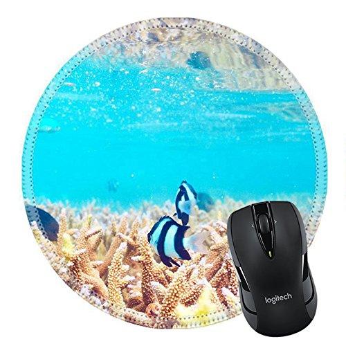 MSD Naturkautschuk Mousepad Bild-ID 37054599Coral Reef bei South Ari Atoll Malediven 4730