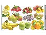 GRAZDesign 911094_57_GK Fenstersticker Obst | Fensterfolie für Deine Küche Bunte Glas-Aufkleber (100x57cm)