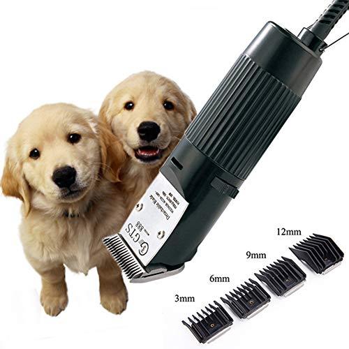 Eléctrico Animal Afeitado Máquina Eléctrico Pelo