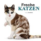 Freche Katzen - Bildband: Süße Kätzchen und freche Katzen, die Samtpfoten festgehalten in vielen schönen Bildern und Texten