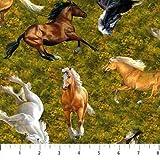 Northcott NOR66 Pferde-Stoff, 0,5 m, 100 % Baumwolle