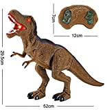 Smartcraft Dinosaur RS 6123 with Realistic Motion & Roar, Remote Control Dinosaur Toy for Kids, RC Walking Dinosaur Toy Roars, Lights & Sounds Fast Forward Function