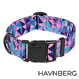HAVNBERG Hundehalsband Gr. M Halsumfang 33,0cm – 51,0cm, breites Halsband für mittelgroße Hunde, Breite 2,5cm, lila geometrischen Dreieck Design