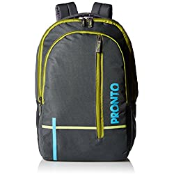 Pronto Spirit 25 Ltrs Grey Casual Backpack (8802 - GY)