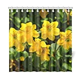 QIUJUAN Home Decor Bath Curtain Caltha Palustris Flowers Yellow Hahnenfugewchs Polyester Fabric Waterproof Shower Curtain for Bathroom, 72 X 72 inch Shower Curtains Hooks Included