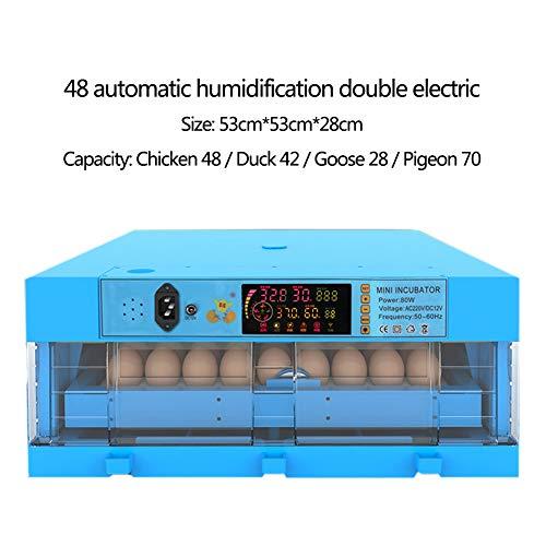 JZWX Ei-Inkubator Transparent 48/64/128 Ei Automatischer intelligenter Dual-Power-Inkubator Hühner- und Entensetzlinge Blau,B,48eggs