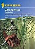 Saatgut Zitronengras-Saatgut East Indian