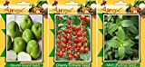 #8: Vegetables Seed BY AIREX Round Gourd, Cherry Tomato and Mint (Pudina) Seed (Pack Of 50 Seed Round Gourd + 50 Cherry Tomato + 50 Mint (Pudina) Seed + Get 1 More Flower seed Free