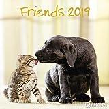 Friends 2019 - Tierkalender, Broschürenkalender, Wandkalender  -  30 x 30 cm