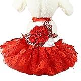 Artistic9 Kleid Haustier-Kleidung, Welpen-Spitze Prinzessin Rock-Haustier-Kleidung für kleine Hunde